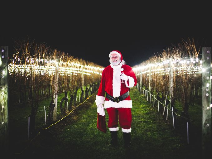 santa vineyard