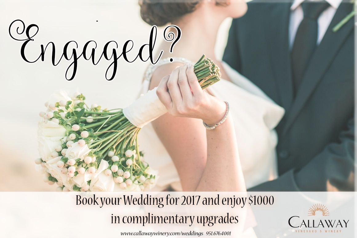 Wedding-Promo 2017